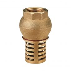 Клапан обратный ITAP 140 погружной с металлической сеткой